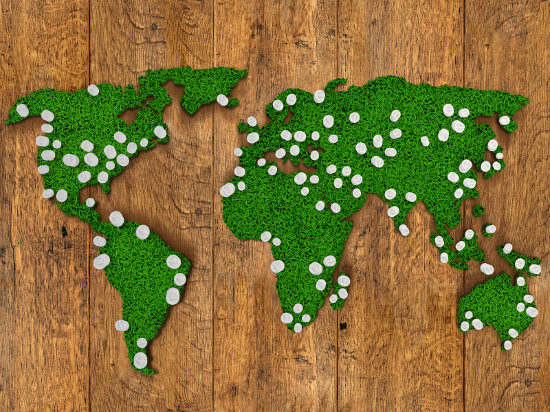 World map background with grass field and wood with glowing lights.