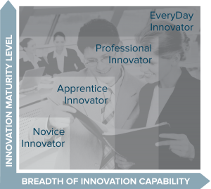Innovation Maturity and Capability Scale