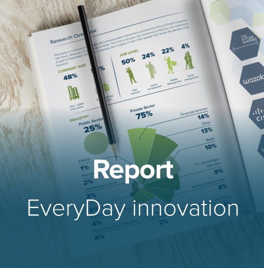 EveryDay Innovation Report Thumbnail