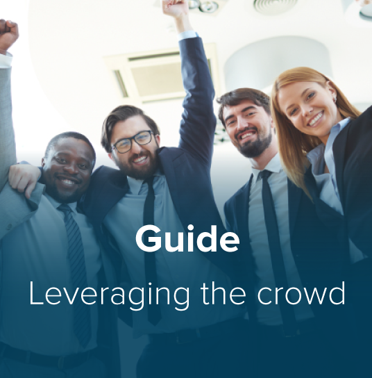 Leveraging the Crowd Thumbnail